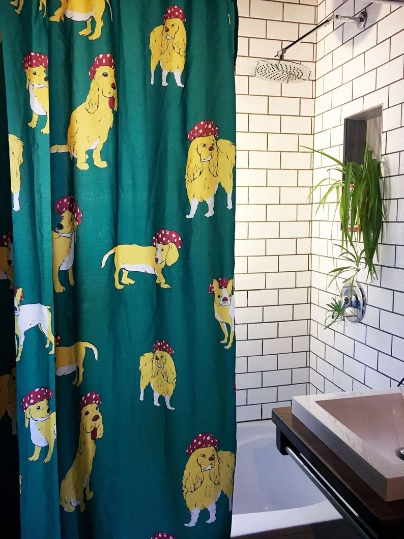 the green shower curtain with dogs wearing shower caps
