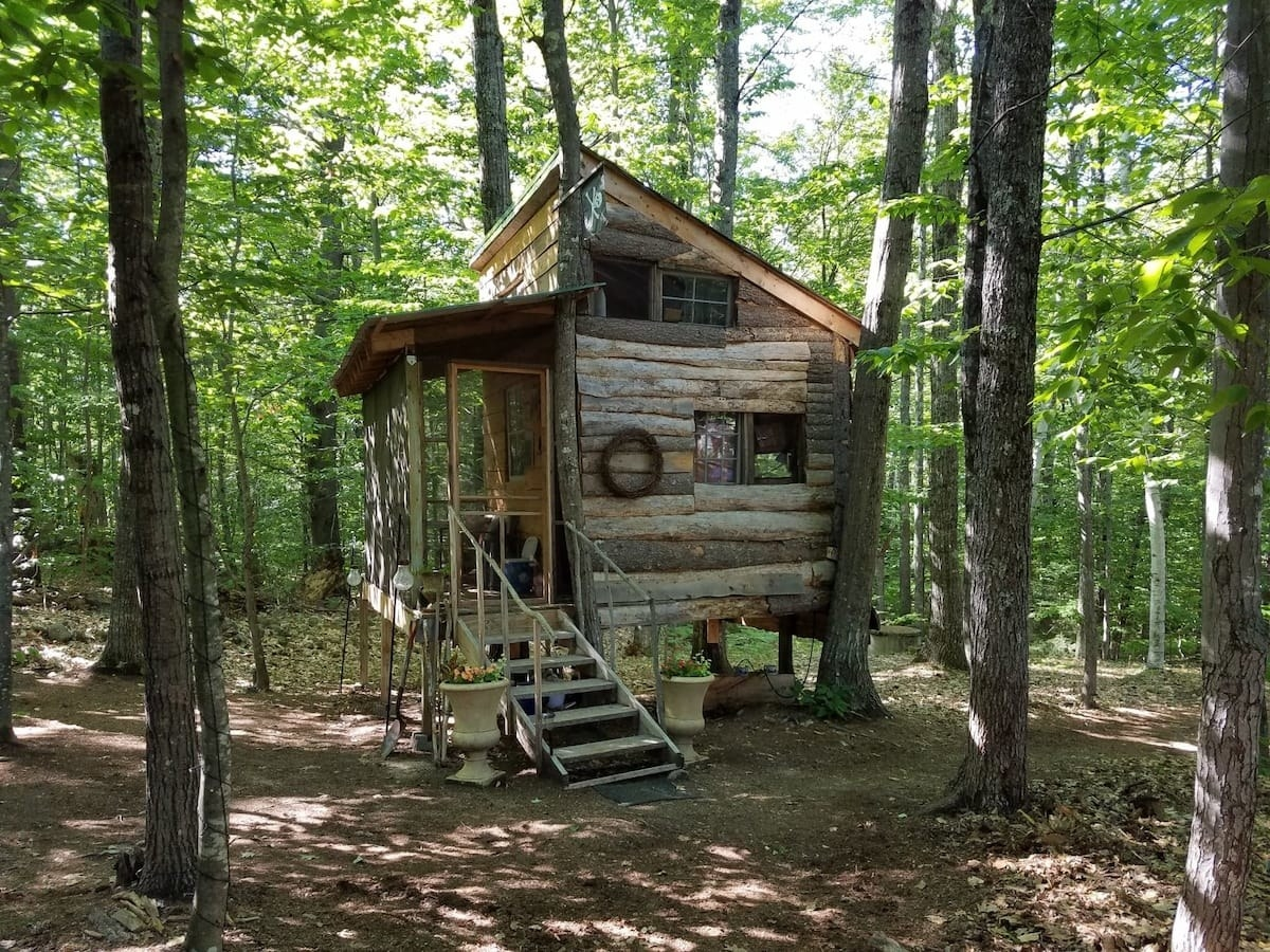 the outside of the treehouse