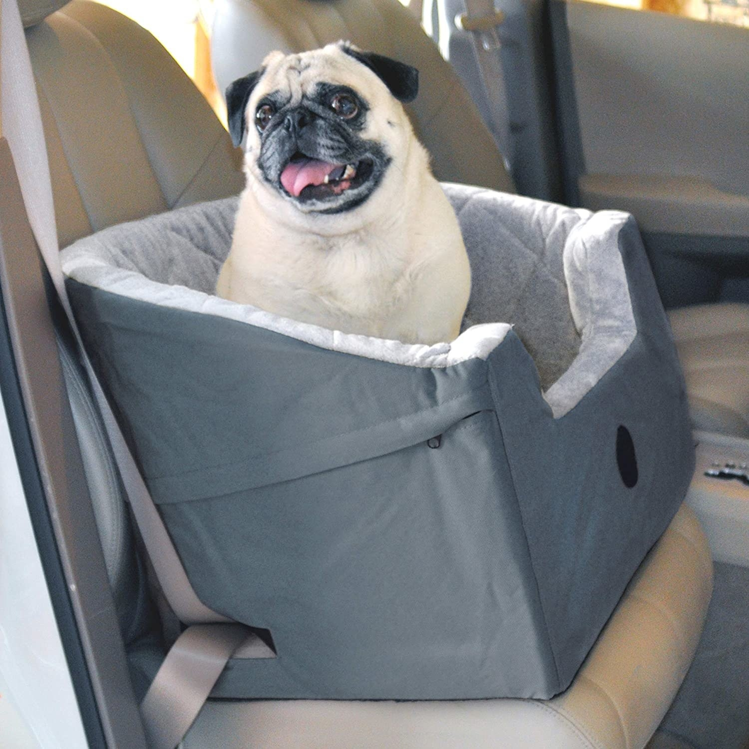 A dog sitting in the booster seat