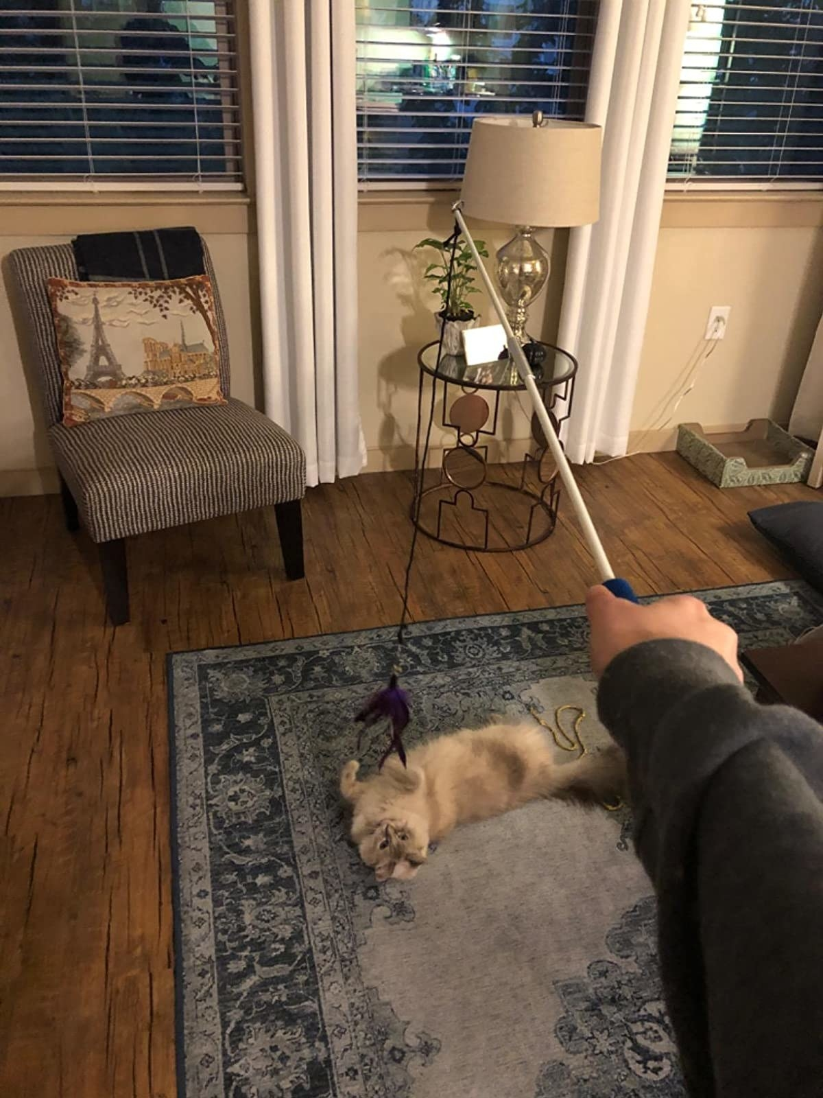 Reviewer's photo of their cat playing with the toy