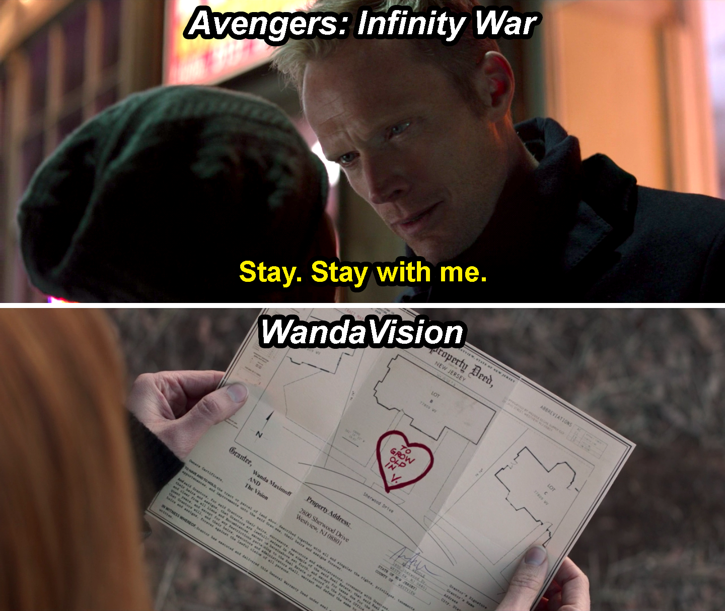 "Vision saying, ""Stay with me,"" in infinity War and the property deed with ""To grow old in,"" written on it in WandaVision"
