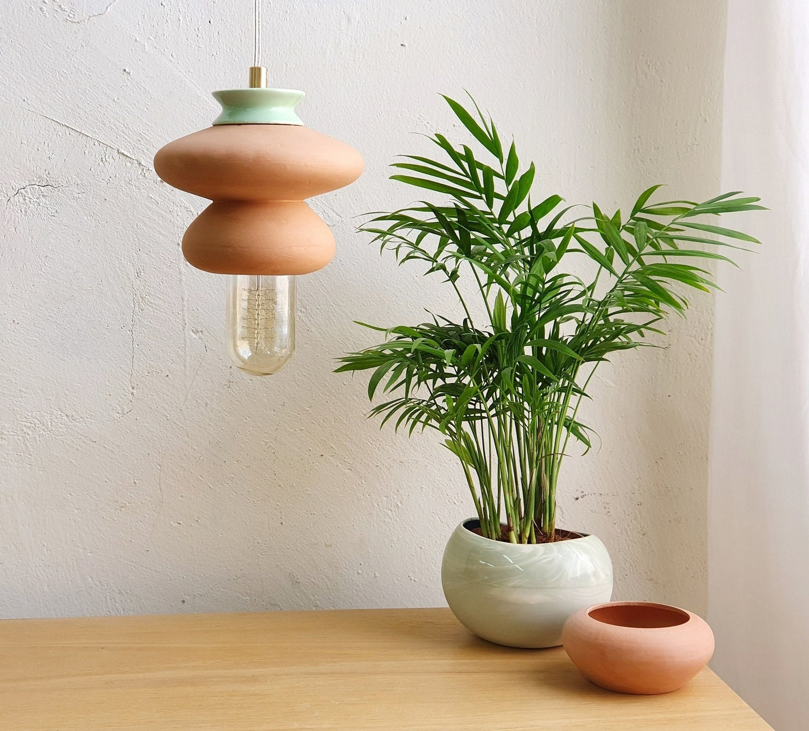 The lamp hanging next to a plant