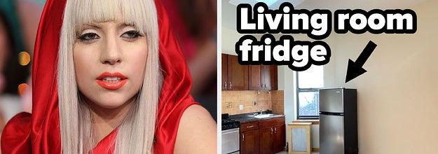 lady gaga and a fridge