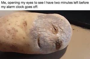 potato looking sleepy