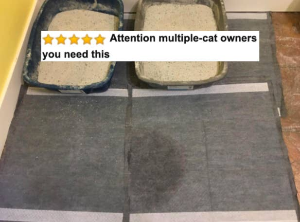 "Reviewer's picture of the training pads with five-star caption ""attention multiple cat owners you need this"""
