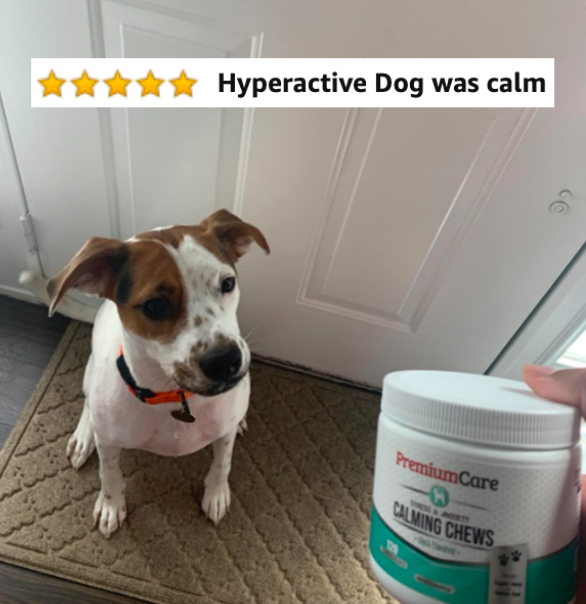 "Reviewer's dog next to the chews with five-star caption ""hyperactive dog was calm"""