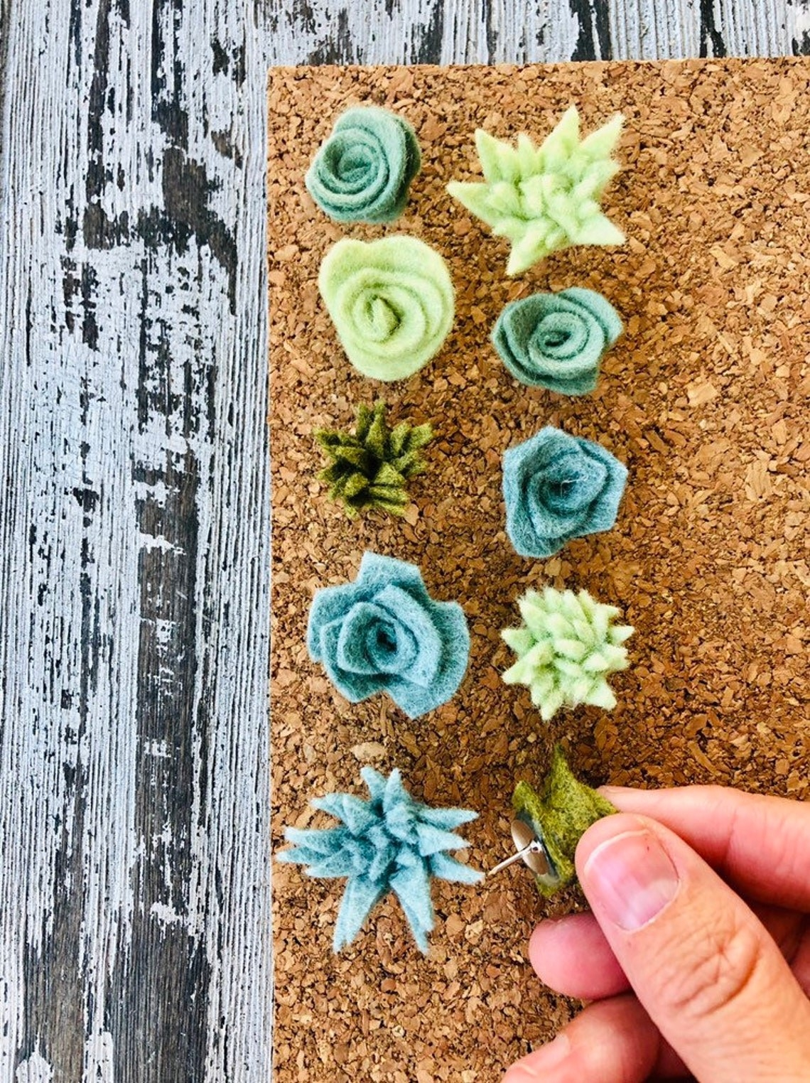 pins shaped like various succulents