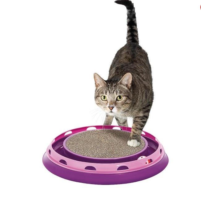 The cat scratcher toy