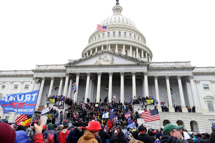 """A mob, waving US and """"Trump 2020"""" flags, crowds the stairs outside the Capitol building in DC"""