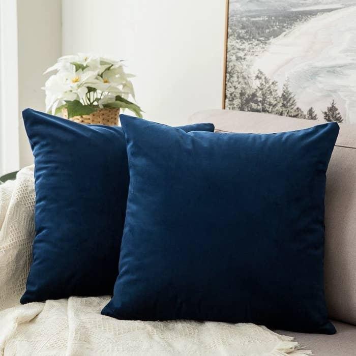 Two blue velvet pillows