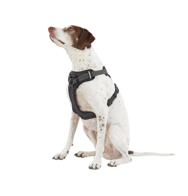 The reflective dog harness in gray