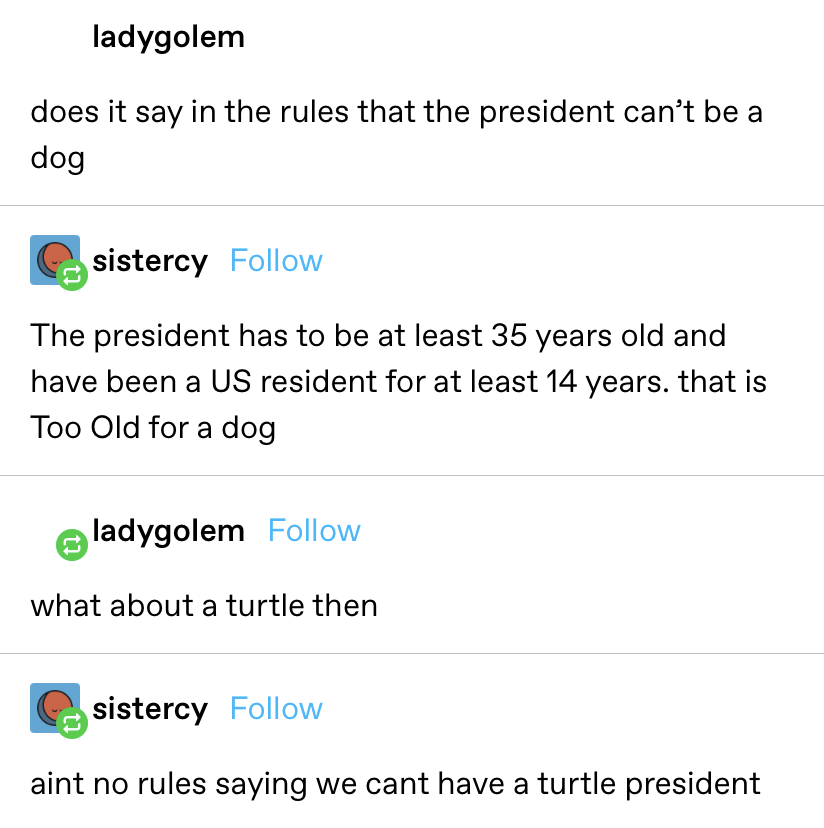 """""""Does it say in the rules that the president can't be a dog?"""" Reply: """"The president has to be at least 35 years old and have been a US resident for at least 14 years. that is Too Old for a dog."""" Reply 2: """"What about a turtle then?"""""""