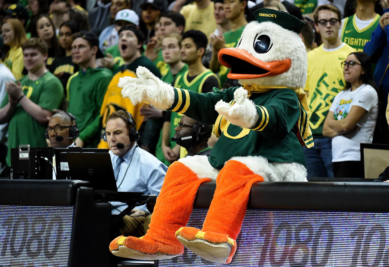 Oregon Ducks mascot sitting on sidelines.