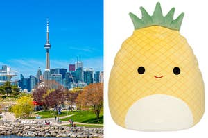 A view of Toronto is on the left with a Pineapple Squishmallow on the right