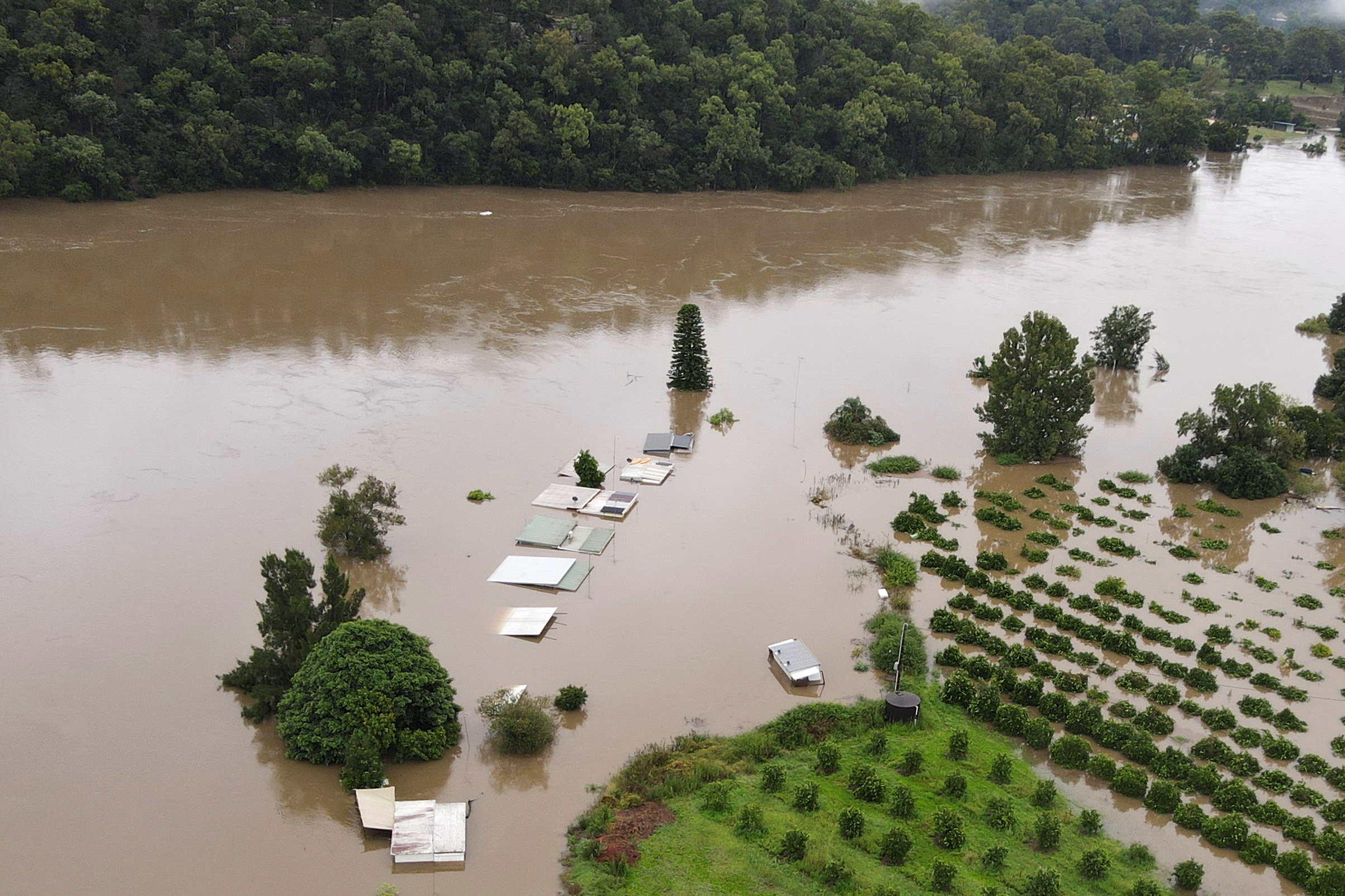 A flooded farm with plants, structures underwater