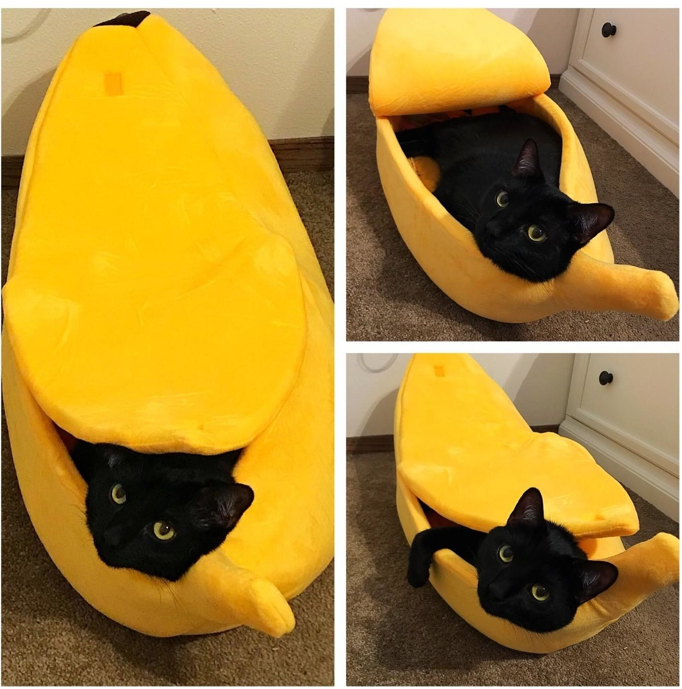 """A cat inside the banana bed, which has a """"peel"""" that can be pulled over the opening to cover the cat as they lie inside"""