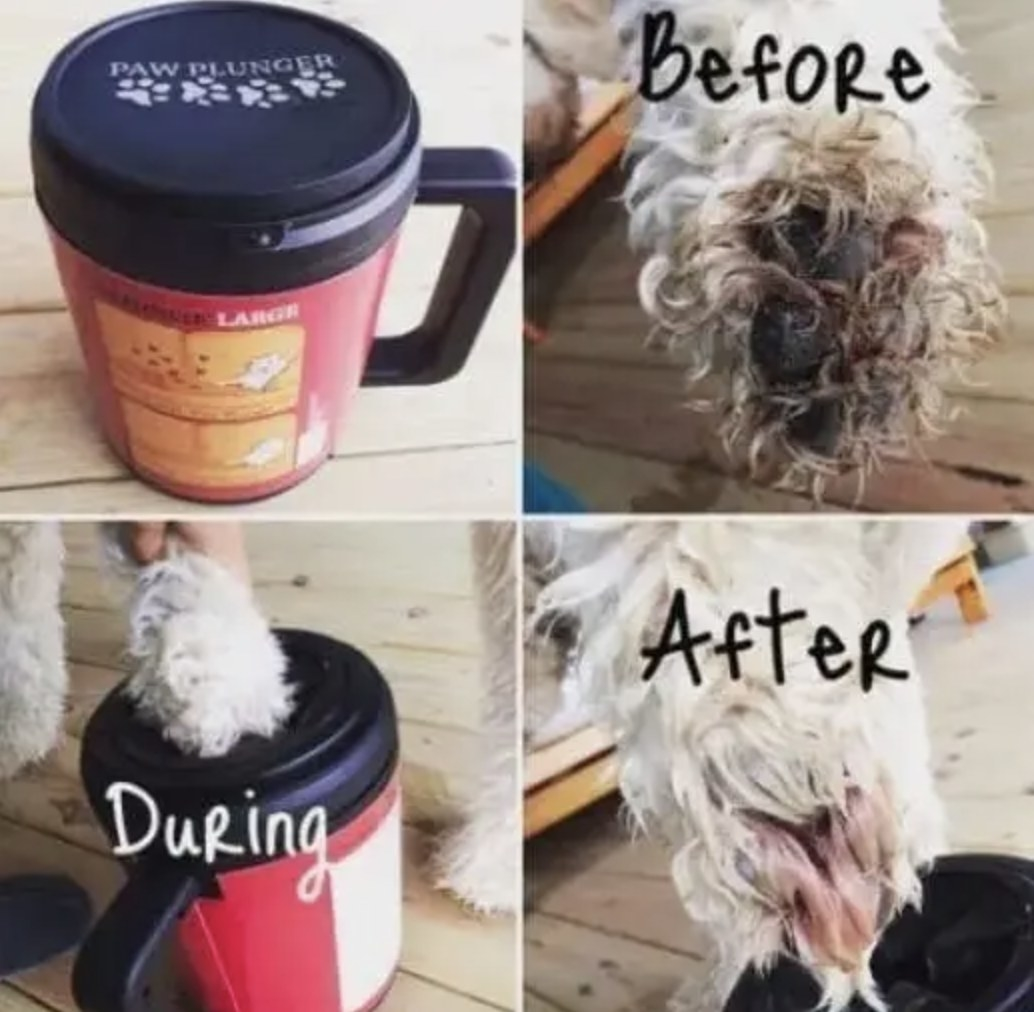 A before and after of a dog's dirty paw getting cleaned