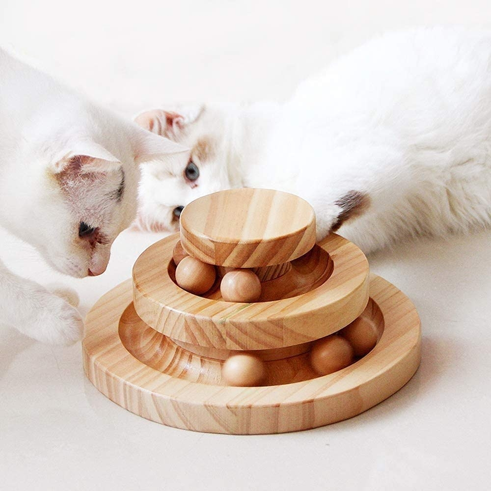 Two cats playing with three-tiered circular toy with wooden balls rolling on each level