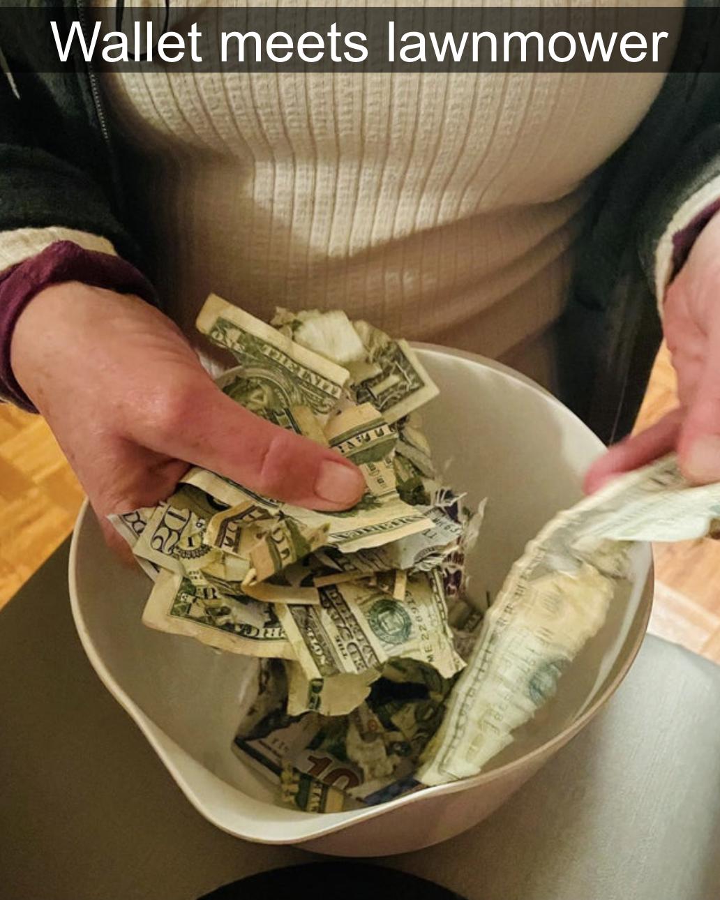 shredded money from a lawnmower