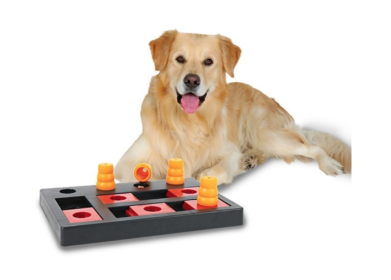 A chess game dog toy.