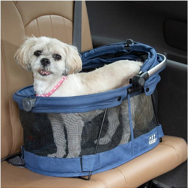 A puppy inside the carrier with the parasol open, inside a car