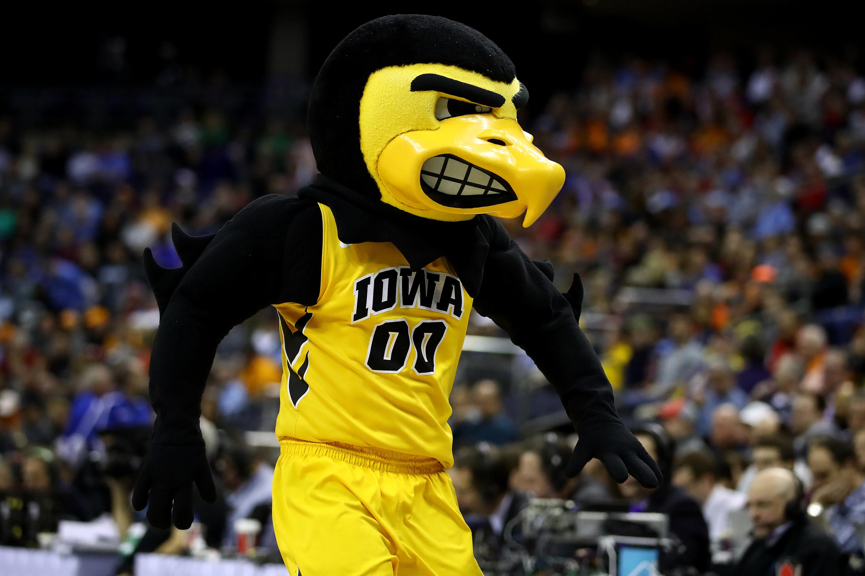 Iowa black and yellow bird mascot on the court.
