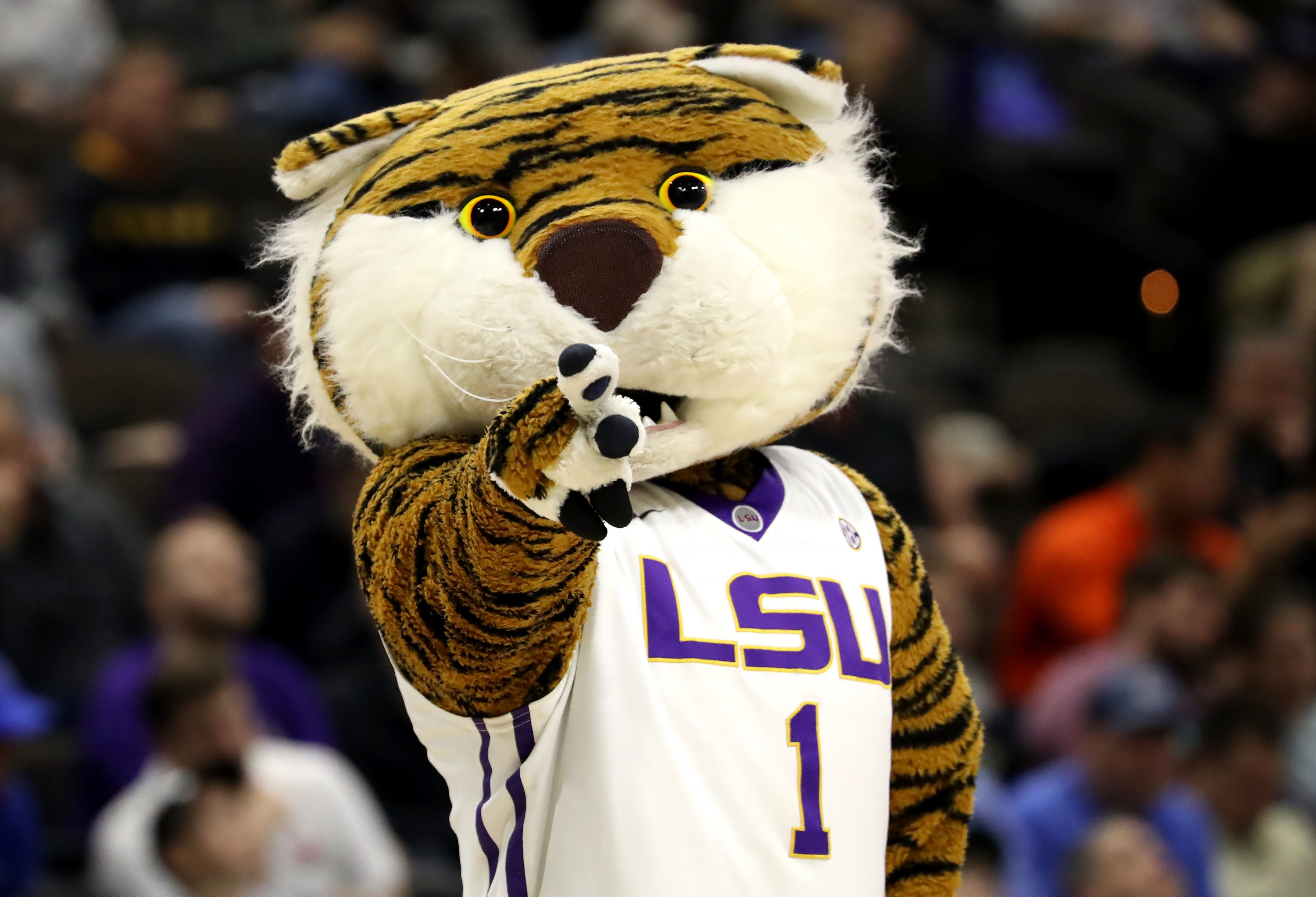 Tiger mascot in LSU basketball jersey pointing.
