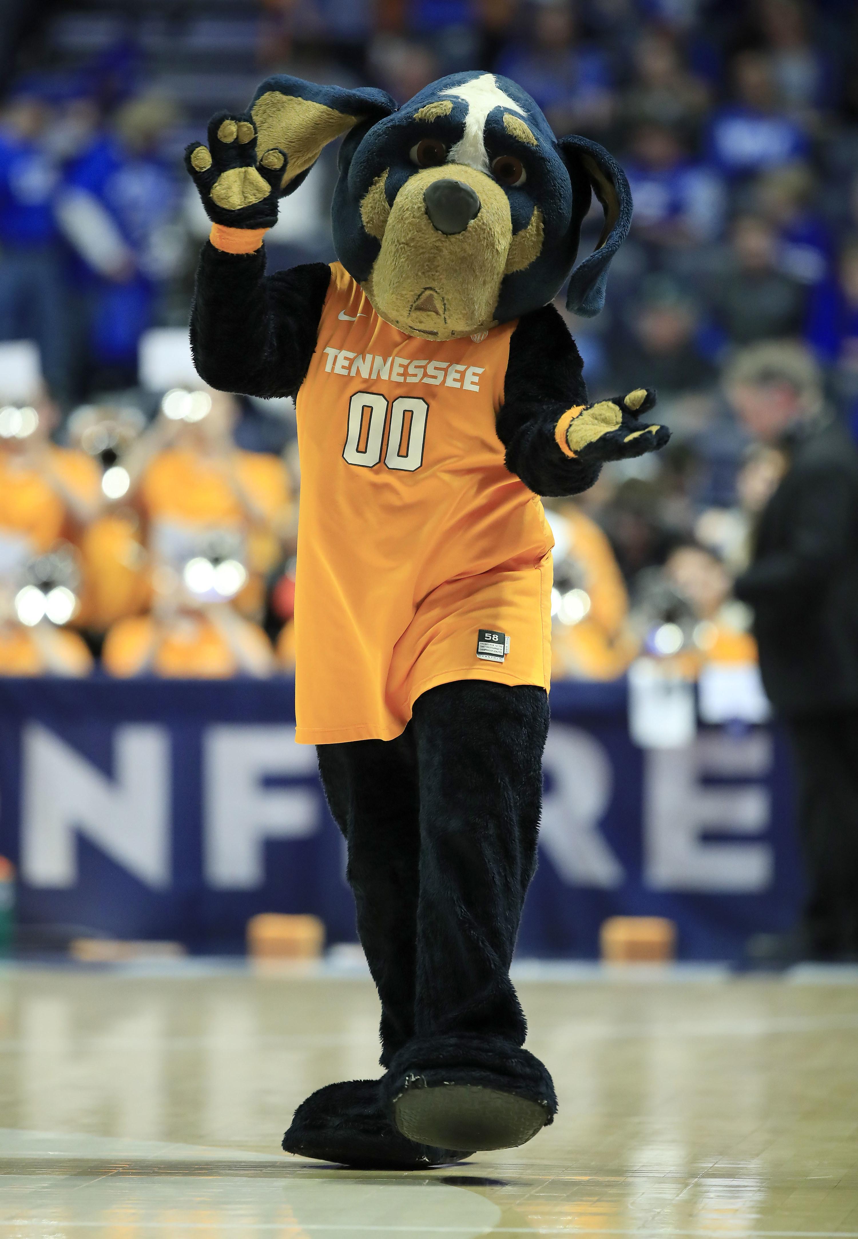 Tennessee hound mascot wearing team's orange jersey.