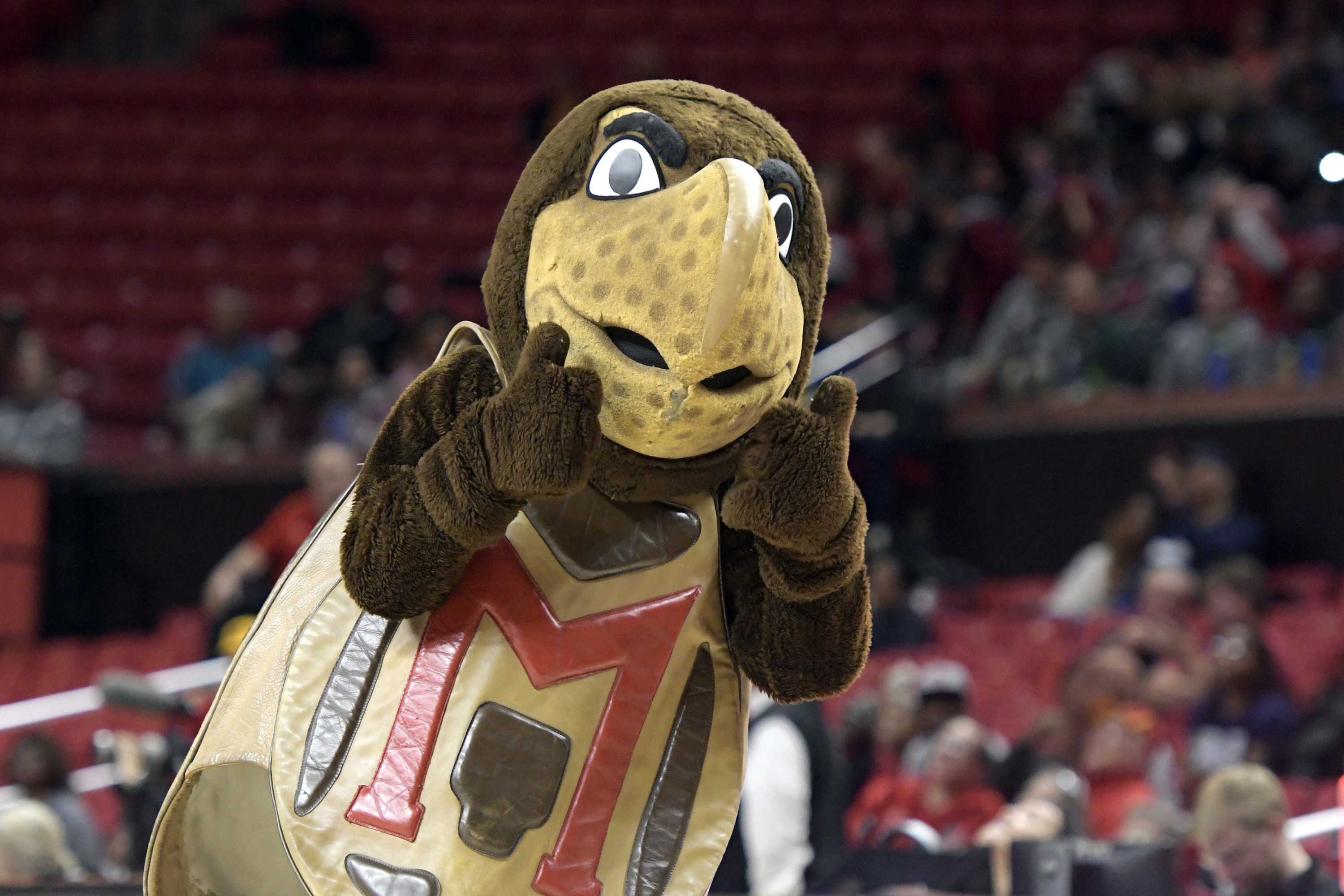 """Turtle mascot with a big """"M."""""""