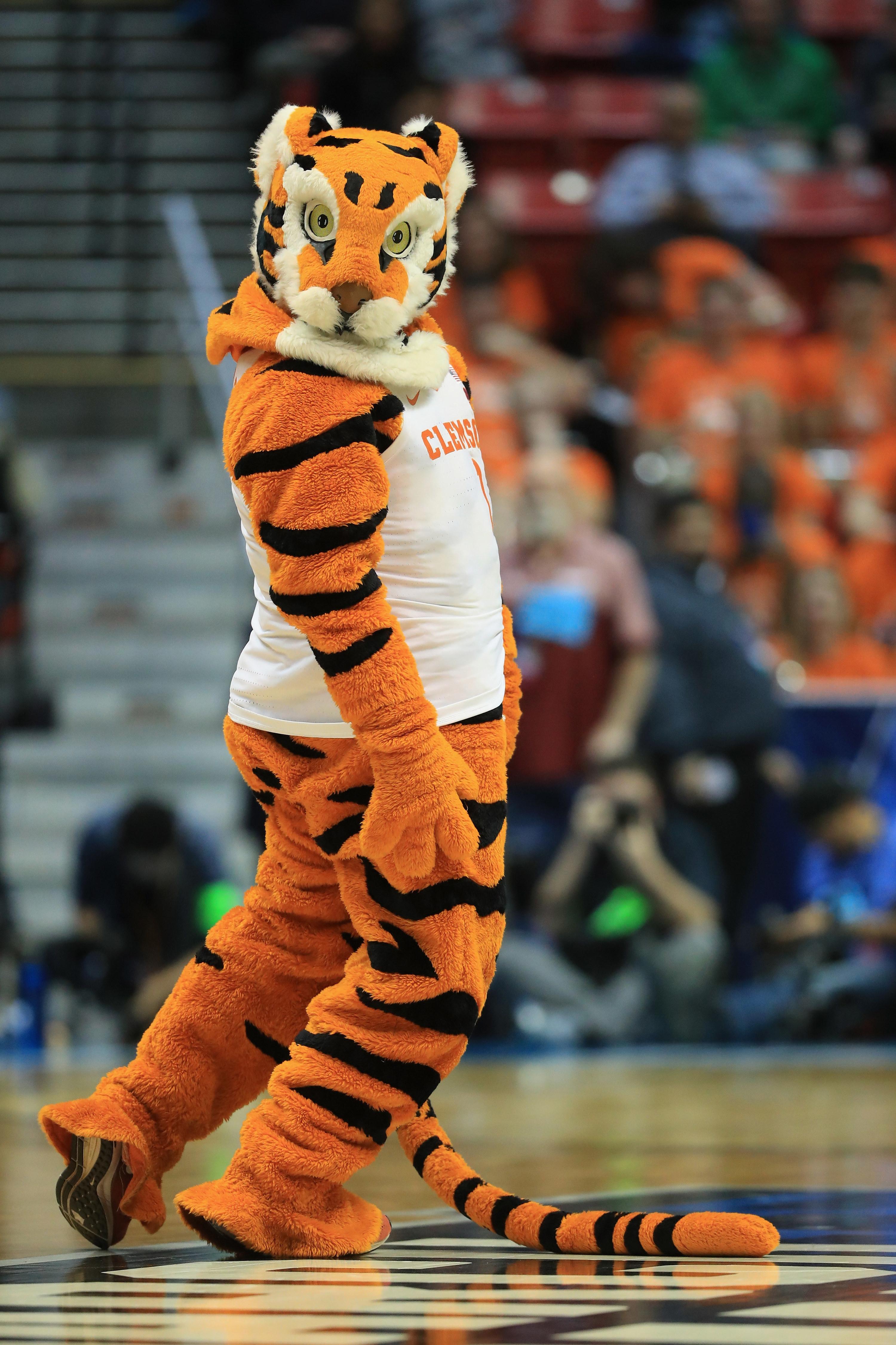 Orange and black Clemson Tiger mascot wearing a white jersey.