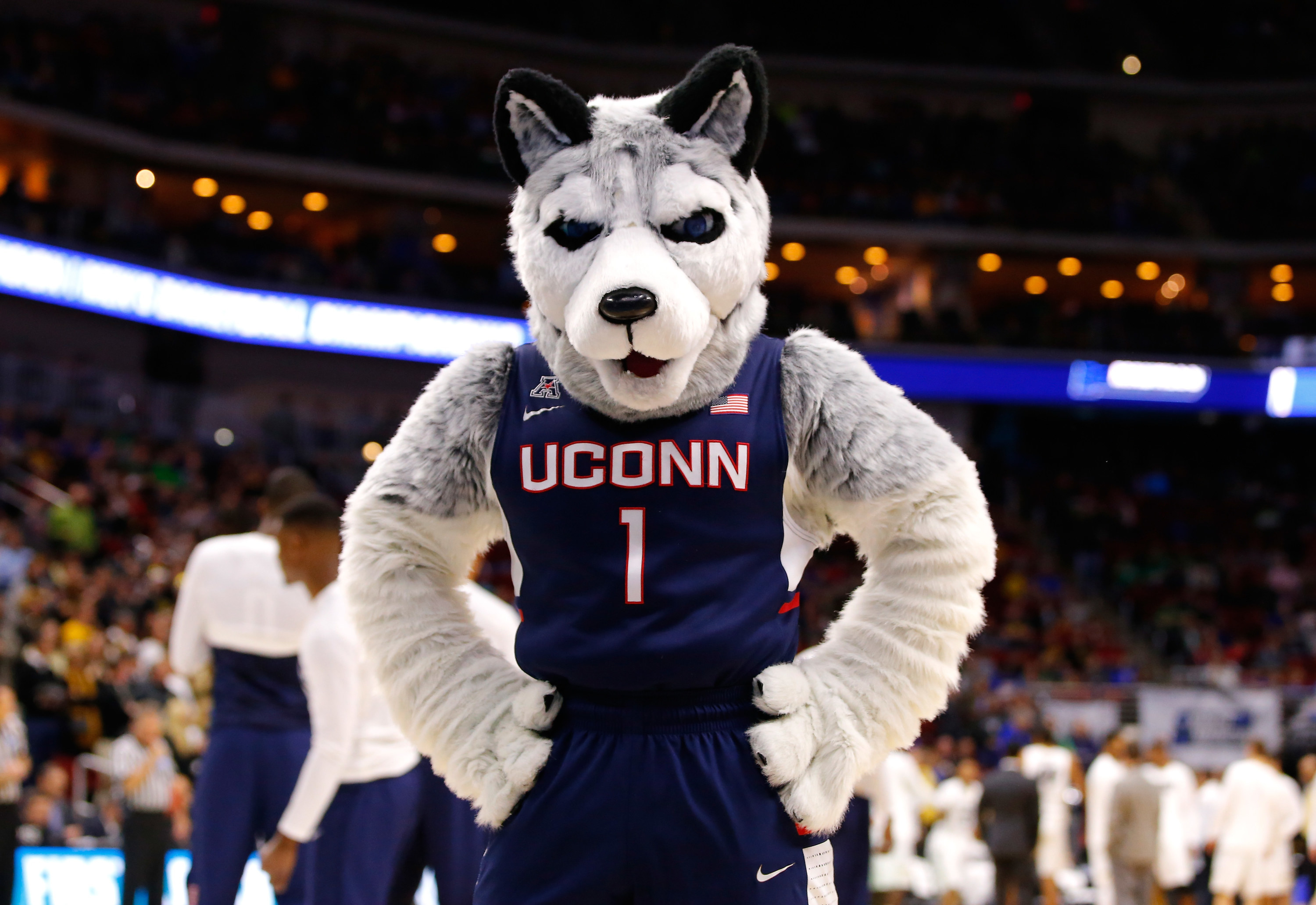 UConn's gray husky mascot with his paws on his hips.