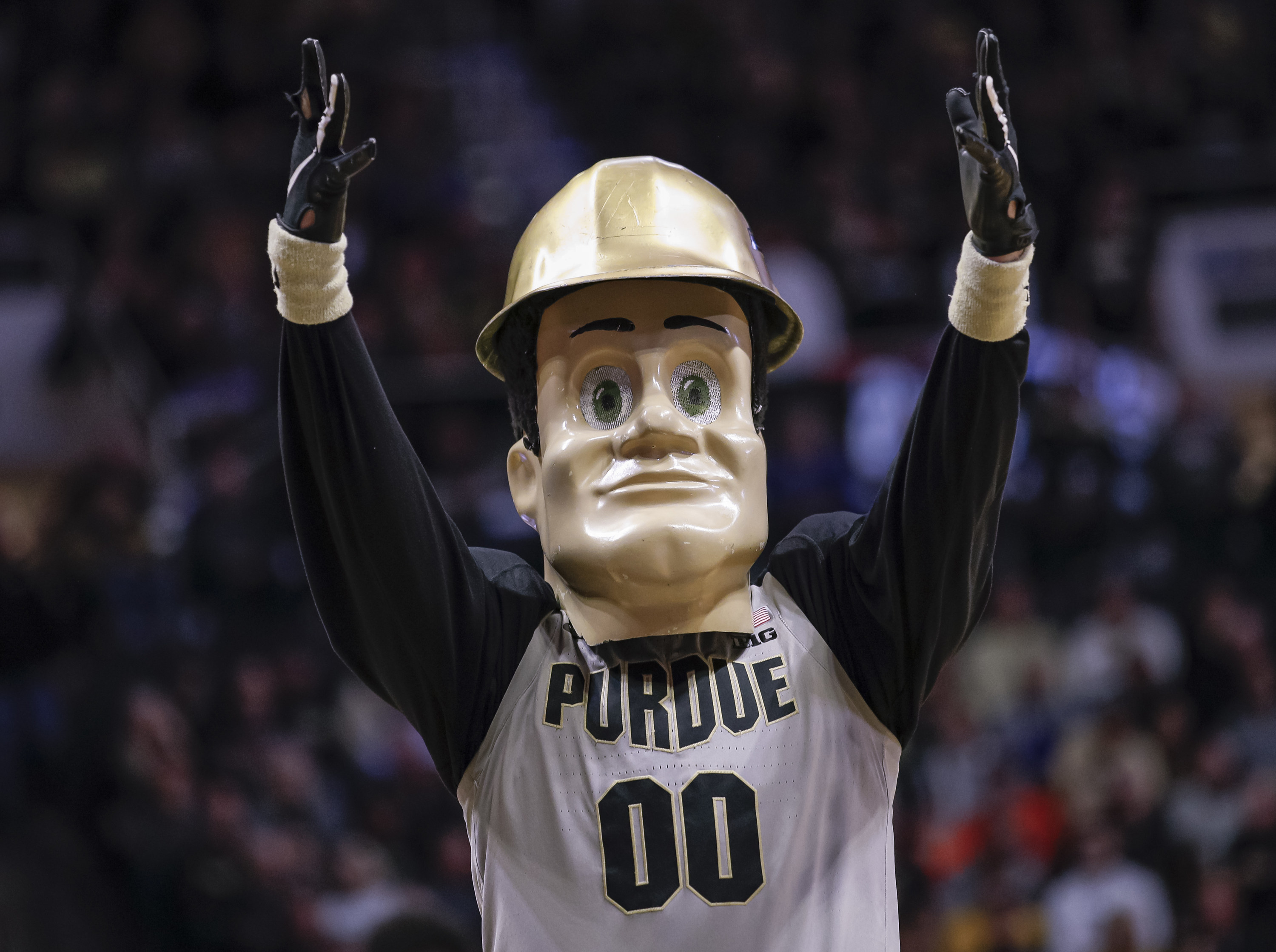 Plastic-faced mascot wearing a bronze hard hat and Purdue jersey.