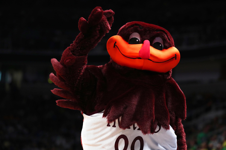 Hokies' purple bird mascot with an orange beak.