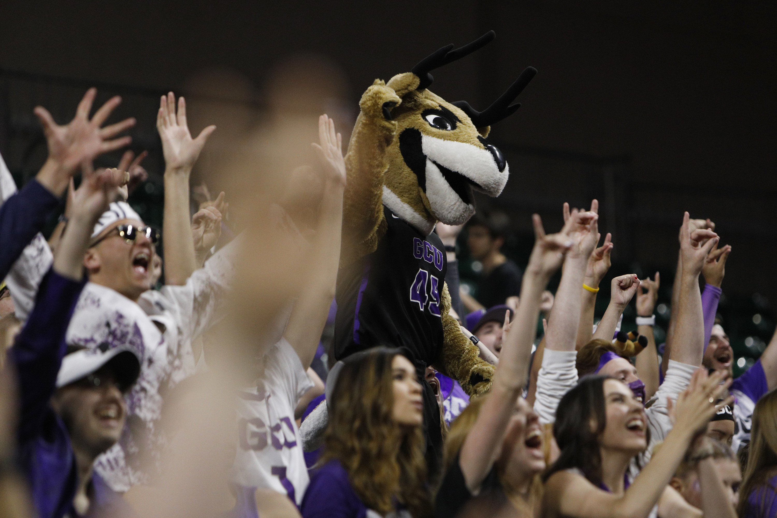 Antelope mascot with black antlers cheering in crowd.