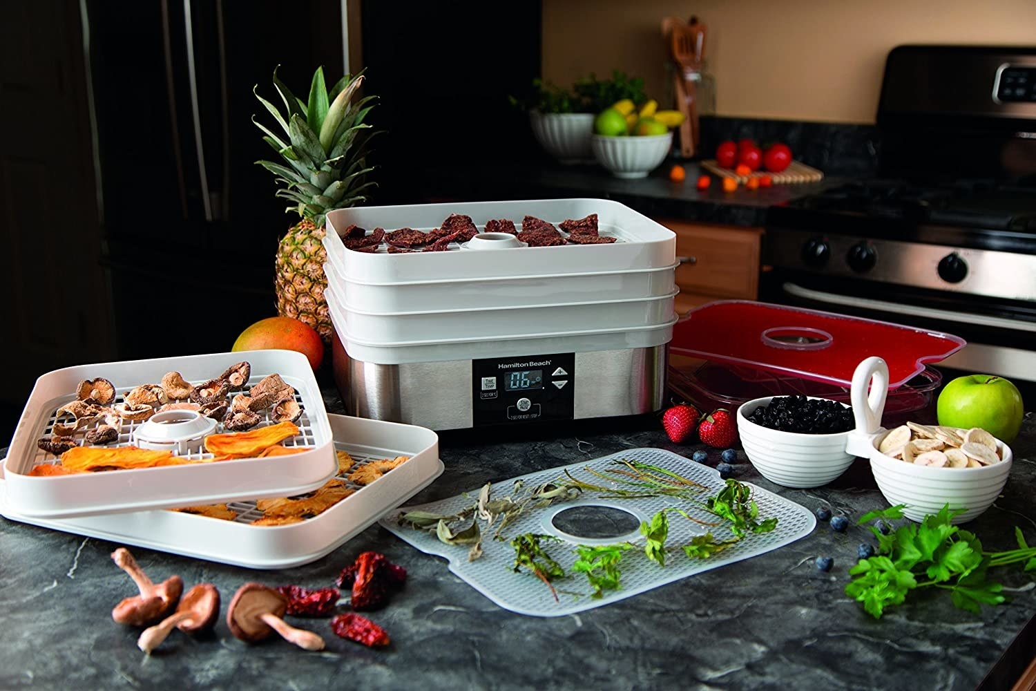 the dehydrator surrounded by dried fruit and veggies