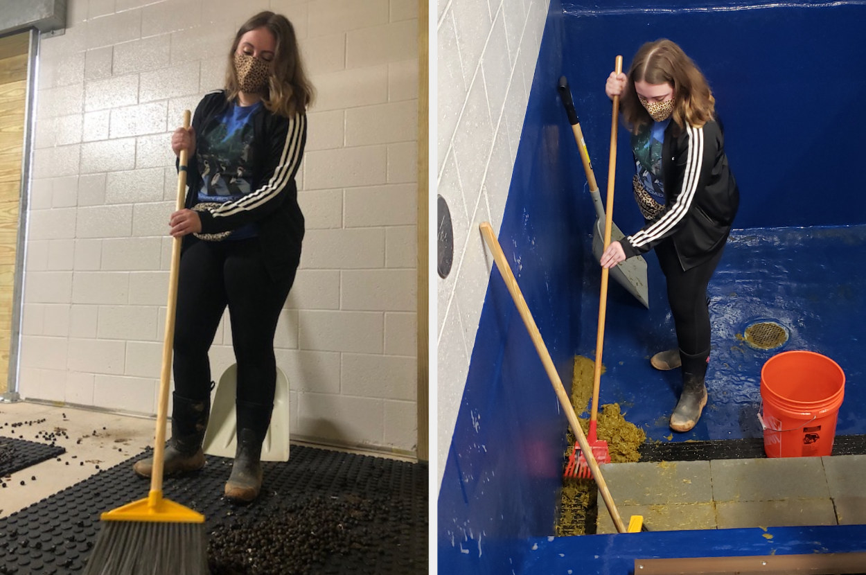Two side by sides of a woman cleaning animal poop up
