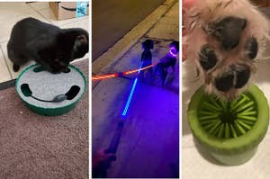 A cat toy with a mechanical mouse that pops out of a whole; light-up dog leashes; a paw washing device
