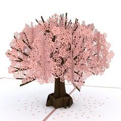 A cherry blossom tree pop-up card