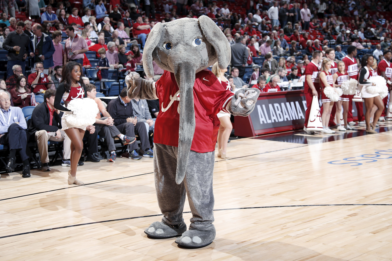 Alabama elephant mascot in maroon Alabama shirt.