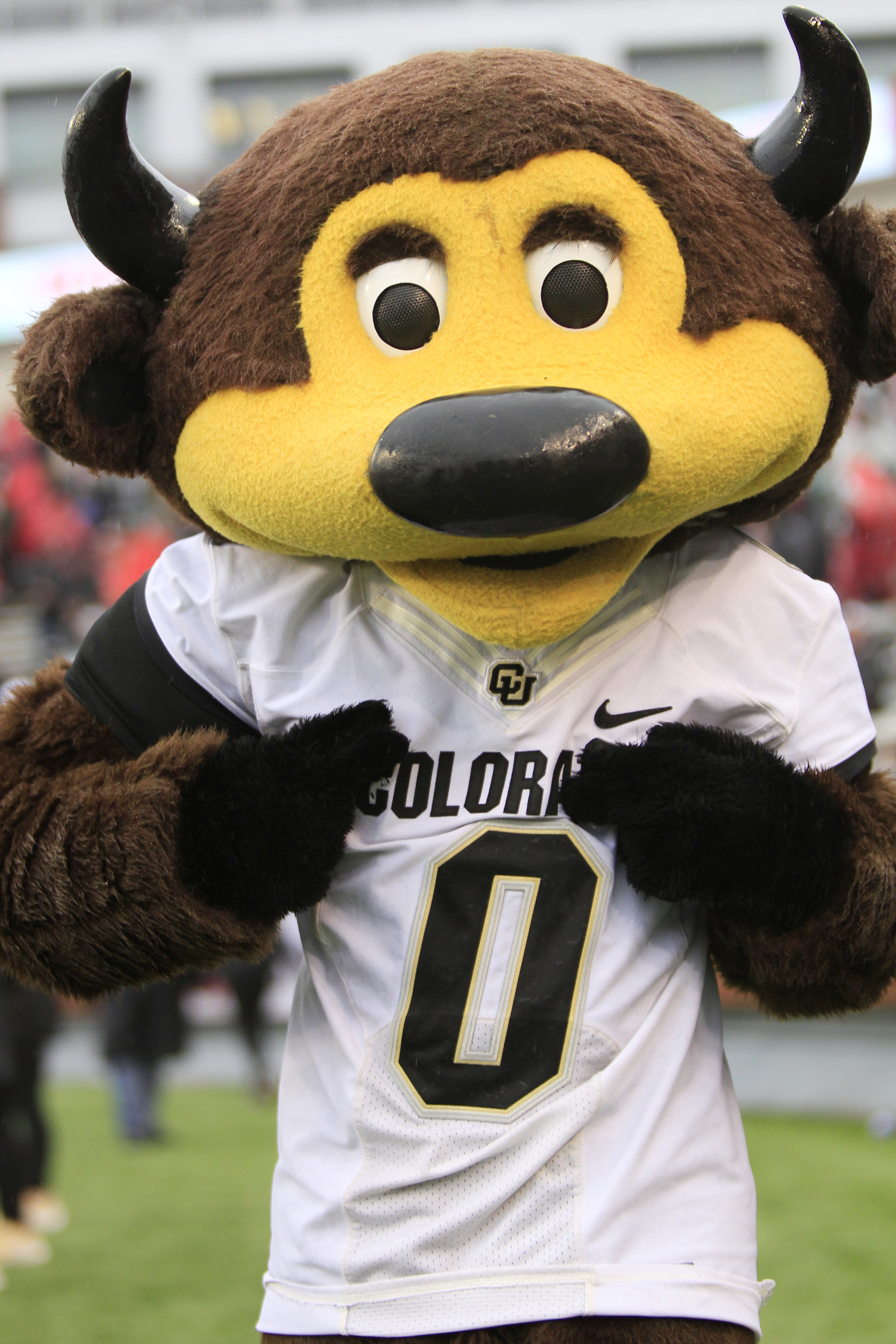 Brown Buffalo mascot with yellow face.