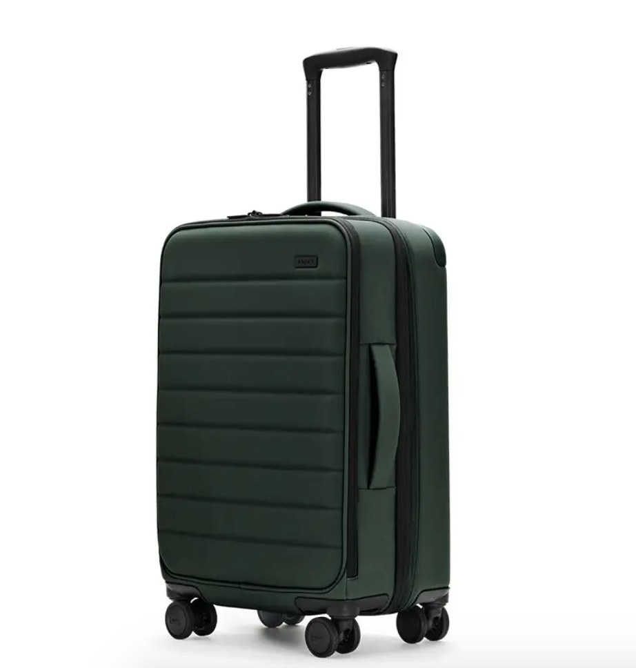The carry-on bag in green