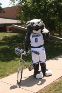 Gray bulldog in a white Drake jersey standing with a bike.