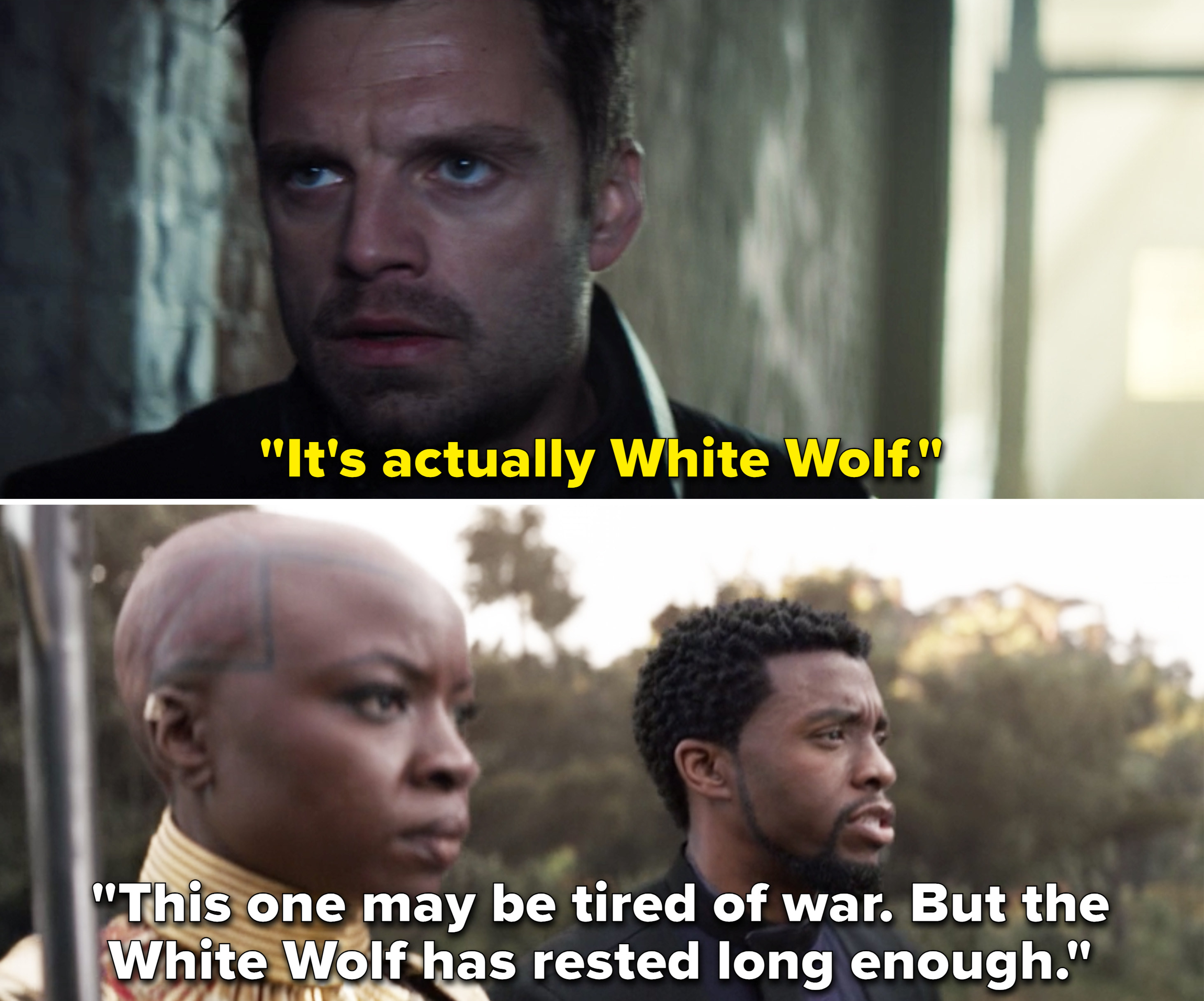 """T'Challa saying, """"This one may be tired of war. But the White Wolf has rested long enough"""""""