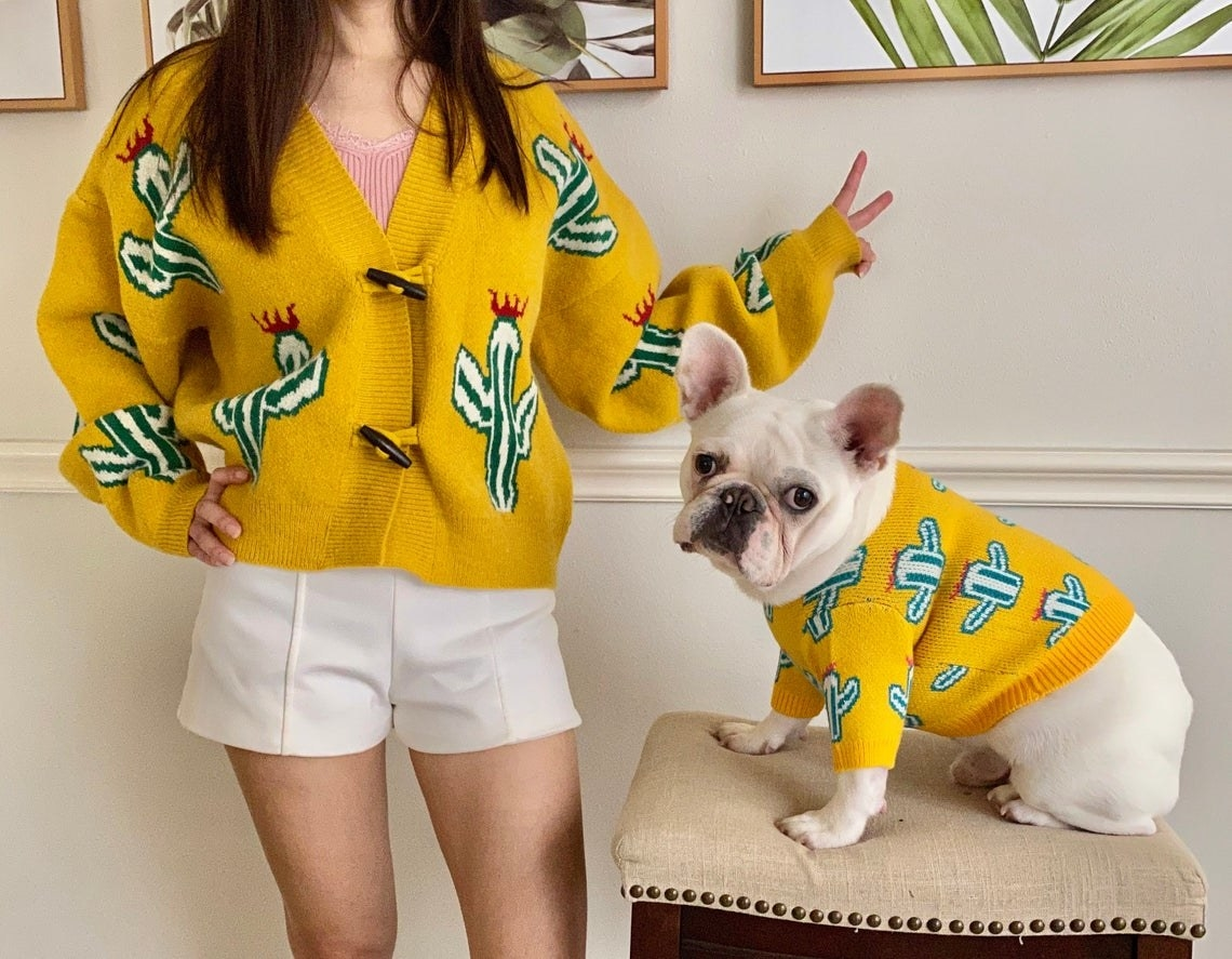 Human and French bulldog in matching yellow cardigans. Both have cactus prints.