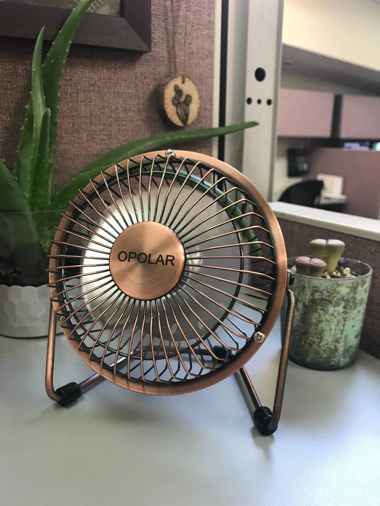 Reviewer photo of fan placed on desk