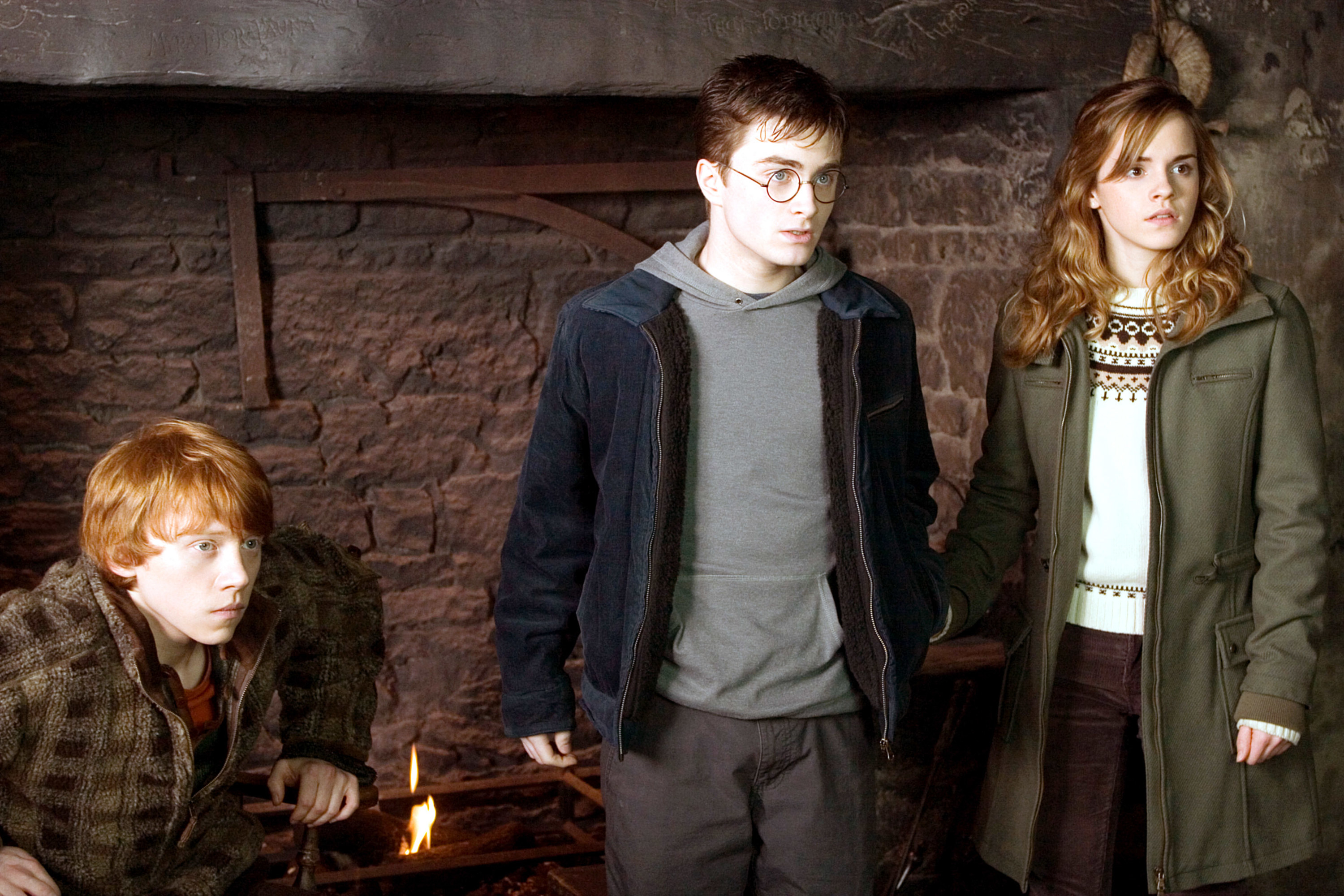 Harry, Hermione, and Ron stand and look in on in surprise
