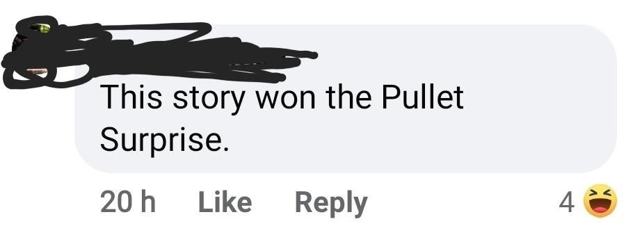 facebook comment reading this story won the pullet surprise