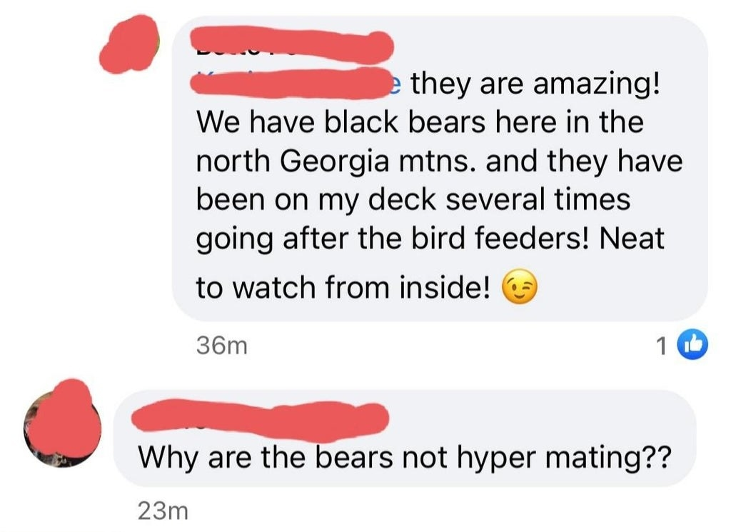 "facebook conversations where someone spells hibernating as ""hyper mating"""