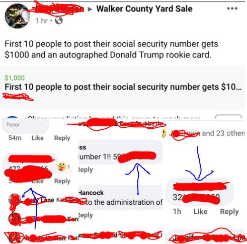 people posting their social security numbers on facebook