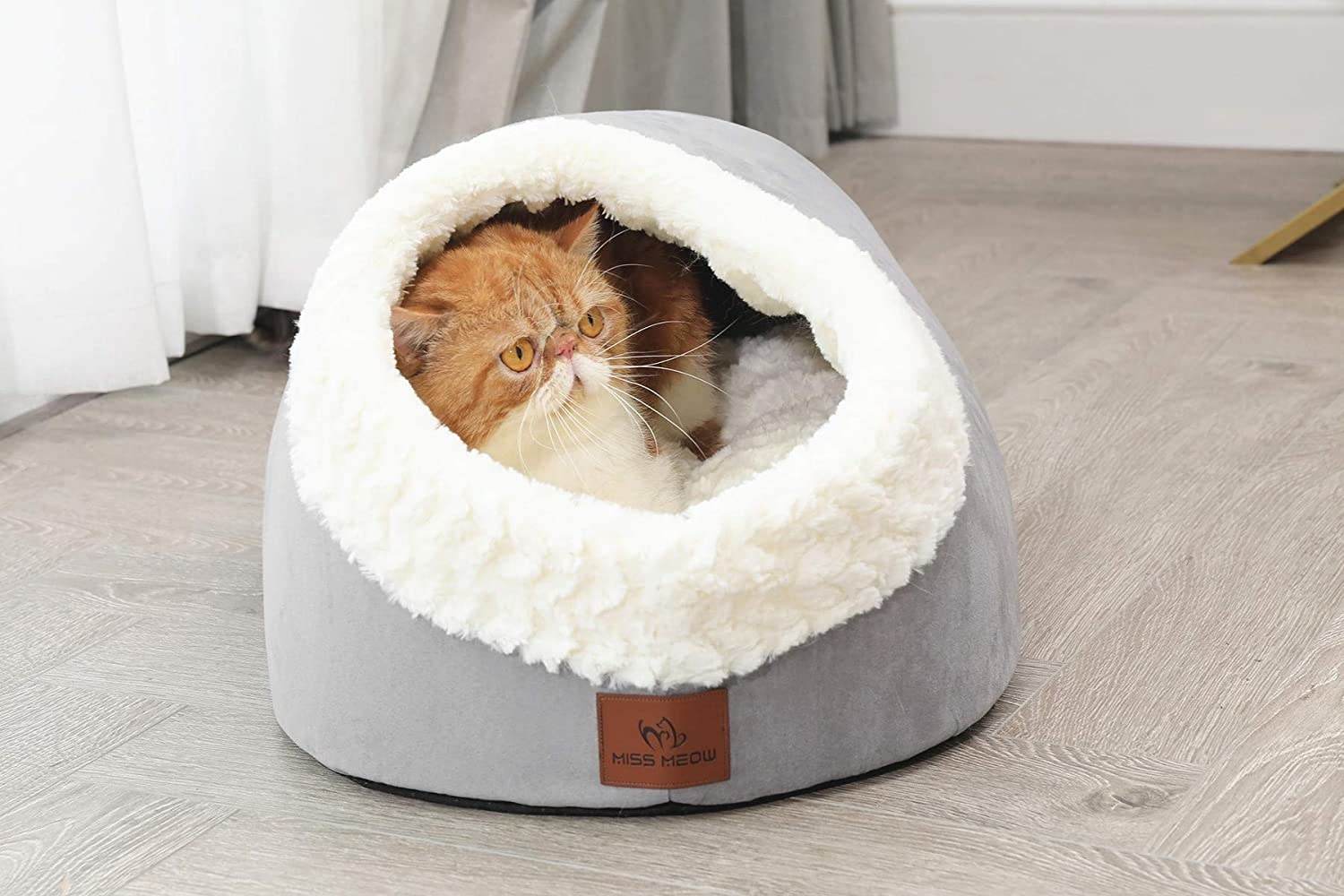 a cat inside of the bed